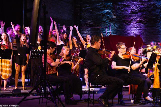 Die Lübeck Pop Symphonics in Aktion, hier bei ihrem letzten Konzert im Juni