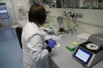 Die epigenetische Forschung ist in den neuen Laborräumen des CBBM angesiedelt.